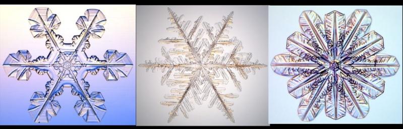 Coupe des vosges snowkite pour les filles ? 2010-110