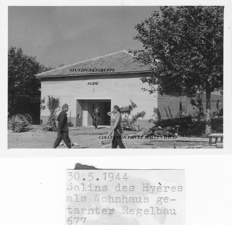 La Badine - Salins d'Hyères  - Gapeau - Hyères plage - Page 4 Img_0024