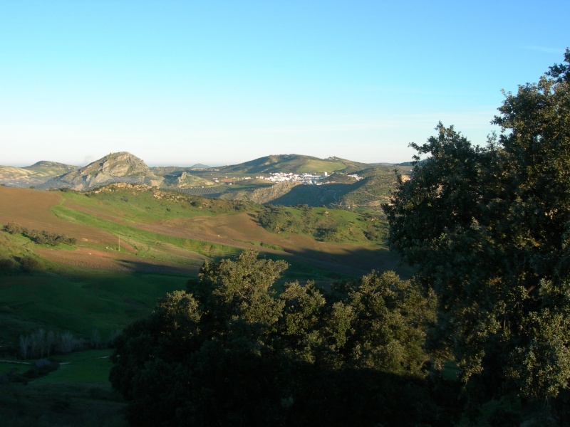 Andalousie (2) Antéquéra-Olvéra-Ronda-Séténil de la Bodégas 00310
