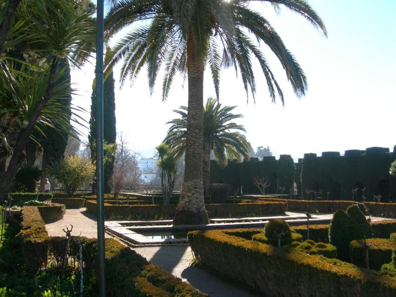 Andalousie (1) Alméria-Grenade 01310