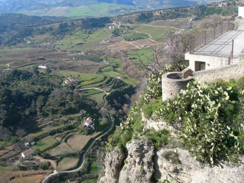 Andalousie (2) Antéquéra-Olvéra-Ronda-Séténil de la Bodégas 03410
