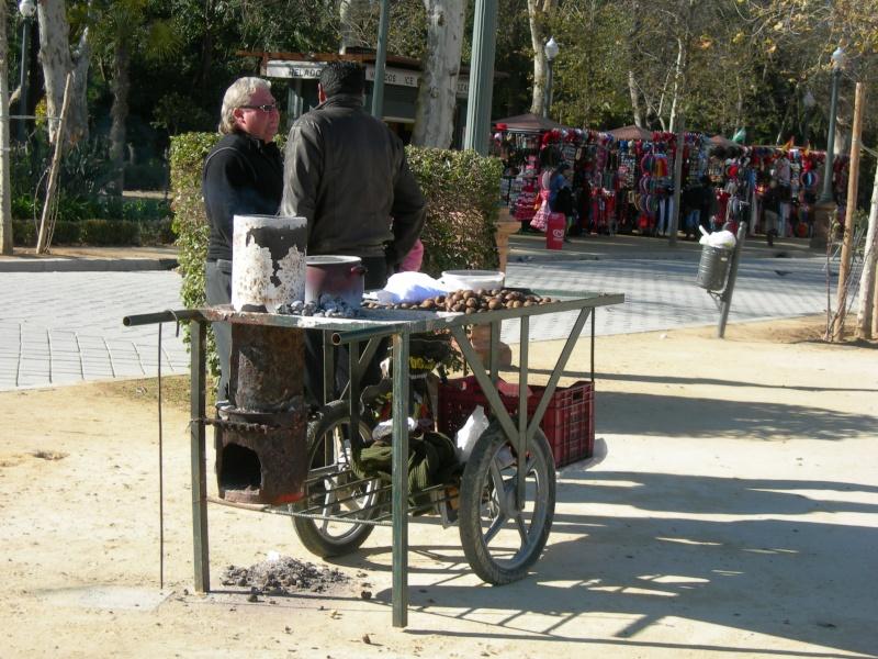 Andalousie (4) Séville 06311