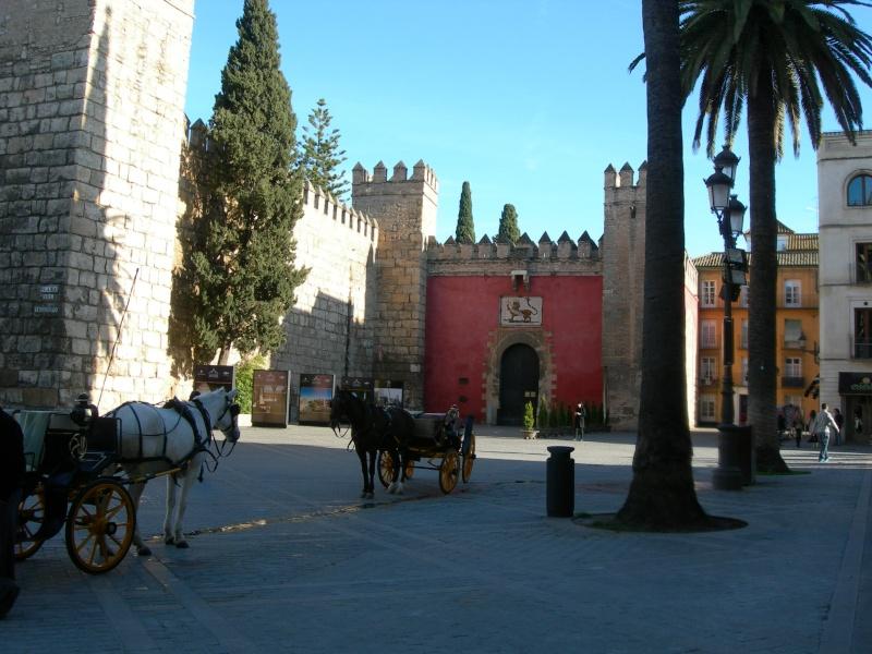 Andalousie (4) Séville 12410