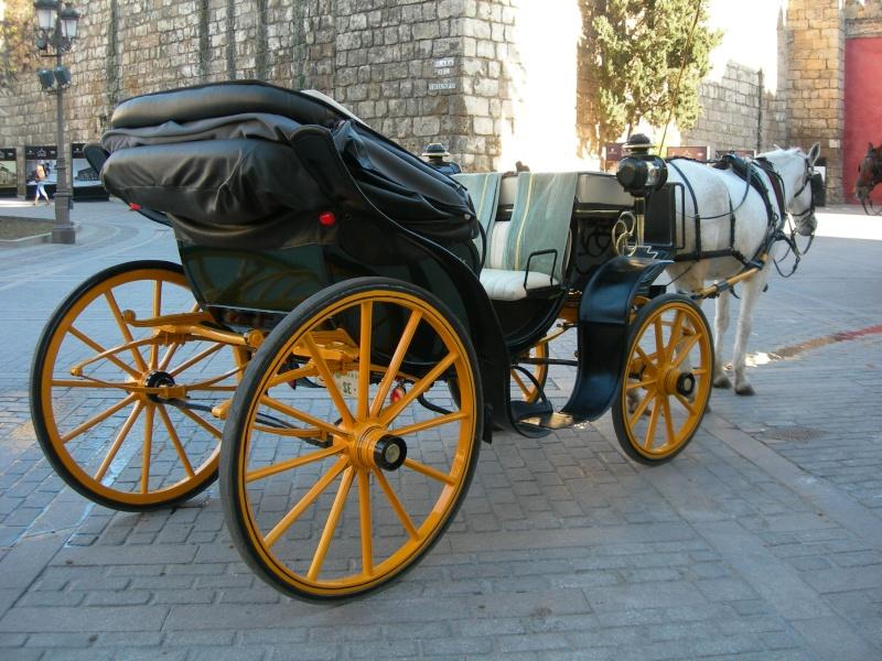 Andalousie (4) Séville 12611