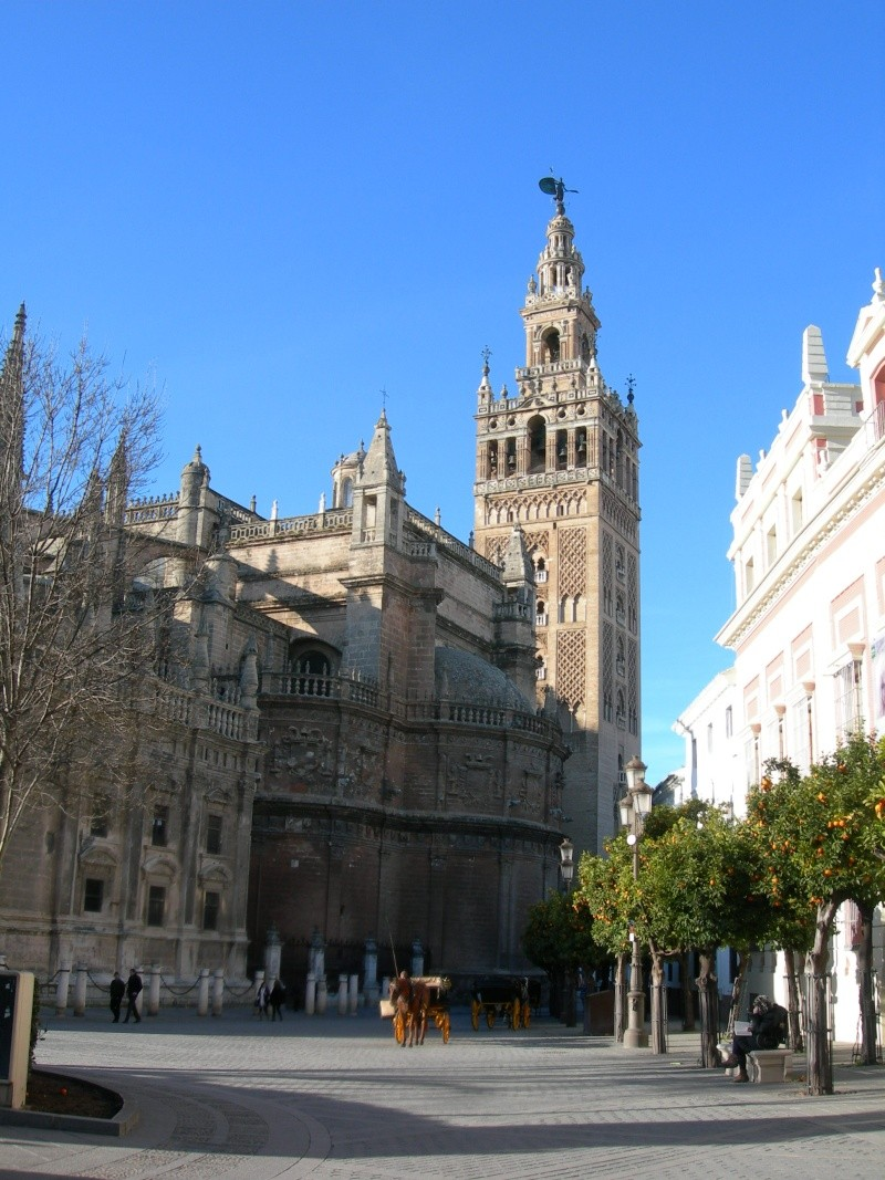 Andalousie (4) Séville 13210