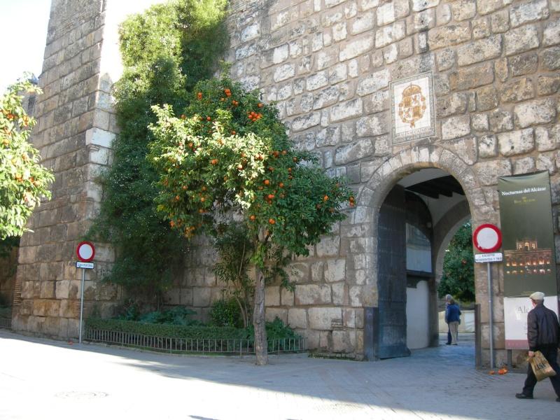 Andalousie (4) Séville 13310
