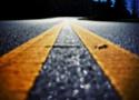 Les films de route, de voitures (et d'autres choses...) 54667310
