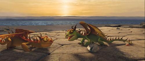 rencontre, partage, camaraderie Dragon15