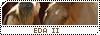Equestra Dream Academy Marron10