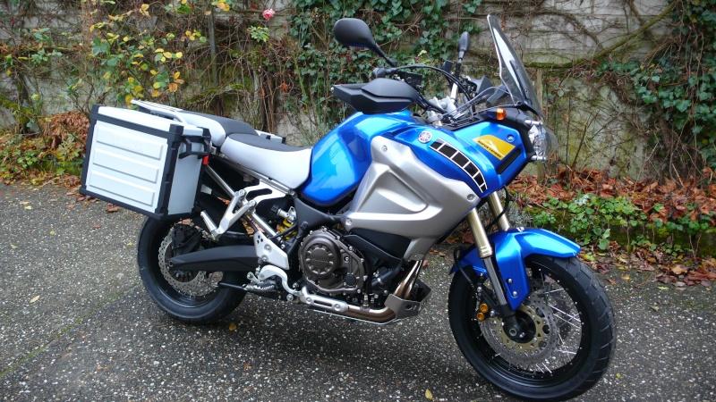 Et une bleue 2011 ! P1020010
