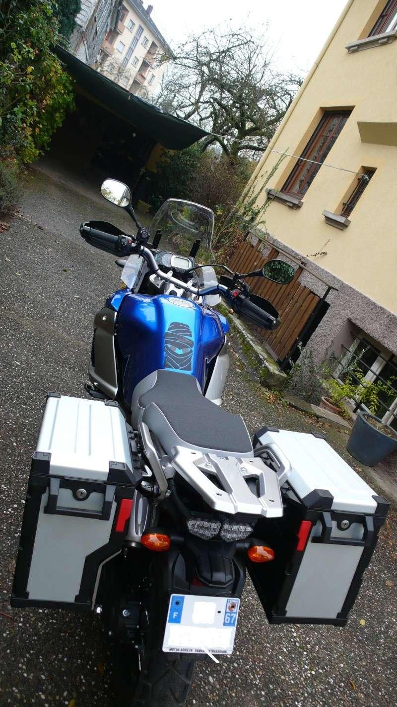Et une bleue 2011 ! P1020011