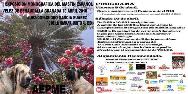 Nationale d'élevage Espagnole 2010 Cuarti10