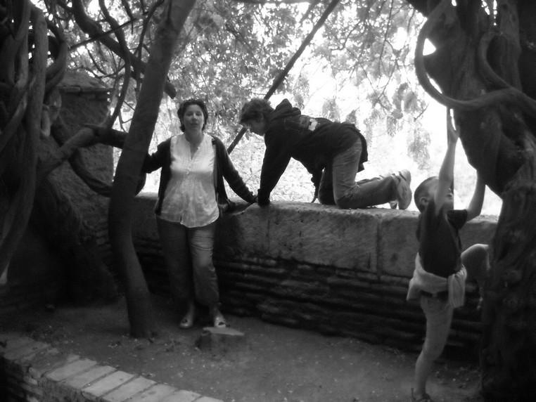 voyage en Espagne, avril 2010 Glycin10