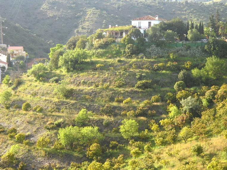 voyage en Espagne, avril 2010 La_vil10