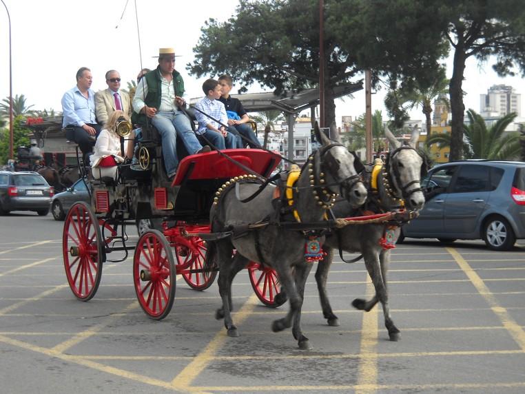 voyage en Espagne, avril 2010 Mules10