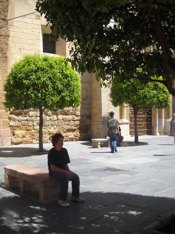 voyage en Espagne, avril 2010 Soleil10