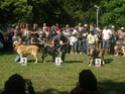 Los Barrios de Luna 2009 Clasem10