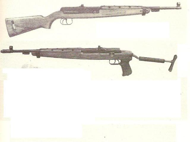 Carabine Statti Carabi10