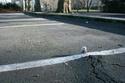 Slinkachu [Street Art] A371