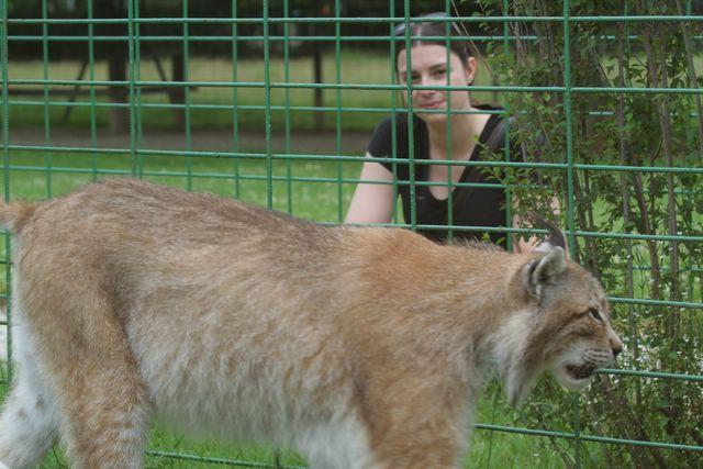 Nous et les félins en parc zoologique Img_7210