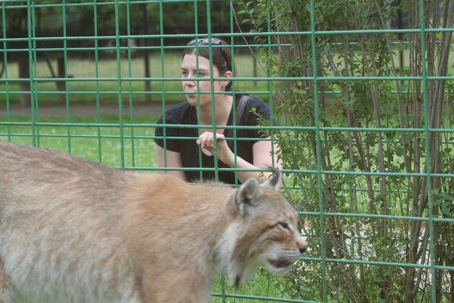 Nous et les félins en parc zoologique Img_7211