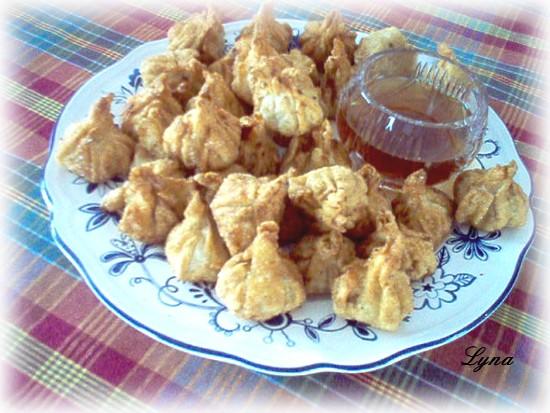 Wontons frits  Wonton10