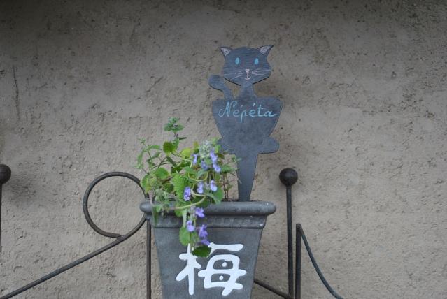 Accessoires chats et chiens faits mains. Chanto22