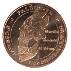 Saint-Cesaire (17770)  [Paléosite] N110