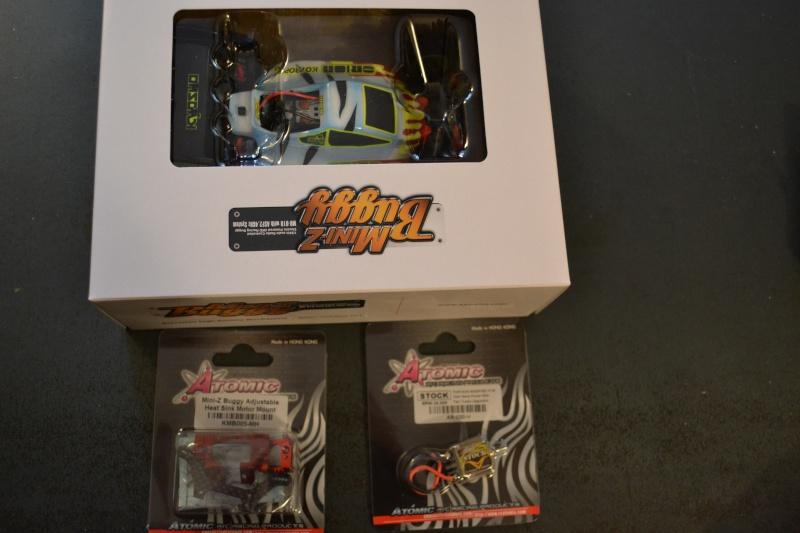 La Gia MiniZ Buggy N°1 Dsc_0011