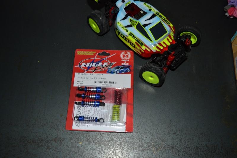 La Gia MiniZ Buggy N°1 Dsc_0016