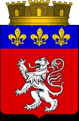 Elections à Lyon 1463 Vid_ly10