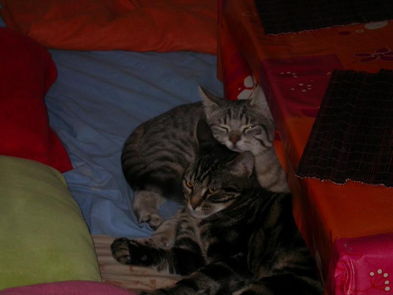 Myrthille et Noah, 1 an Fin_da10