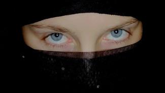 loi sontre le port de la burqa , le fn , une fois encore allié  la gauche ! Burka-11
