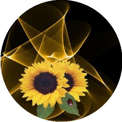 IMAGES FLEURS Fleurs11
