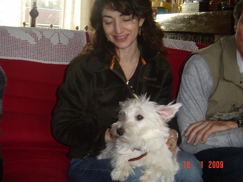 Dixie, westie femelle de 7 mois en RP - Page 2 Dsc05813