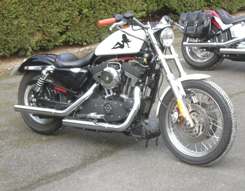 combien sommes nous en 1200 Sportster sur Passion-Harley - Page 3 Cimg1513