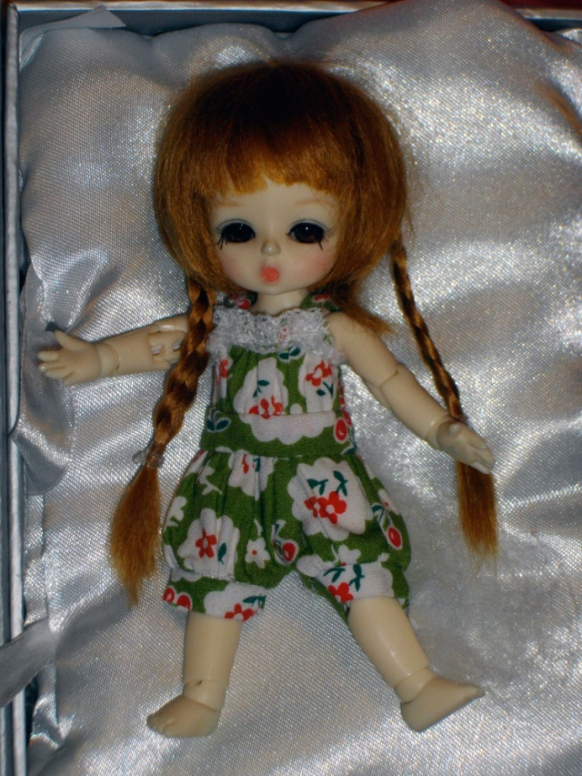 Honee-B de Ruby Red Imgp1427