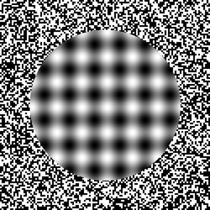 Iluzii optice Iluzie10