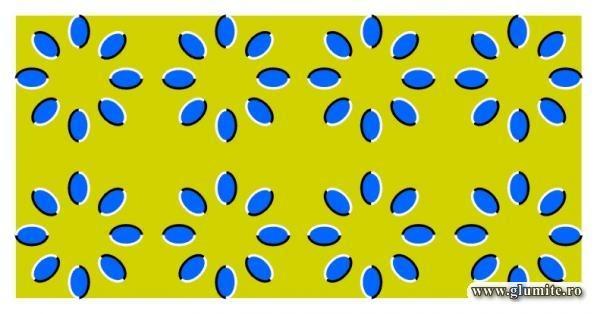 Iluzii optice Untitl10