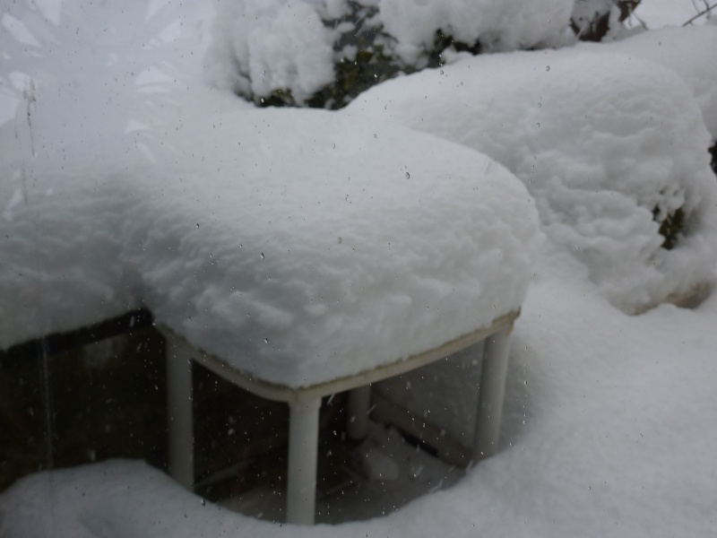 que de neige !! P1020510