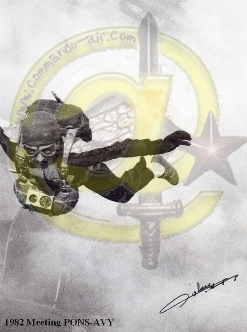 Drapeau des Commandos Parachutistes de l'Air Avatar11