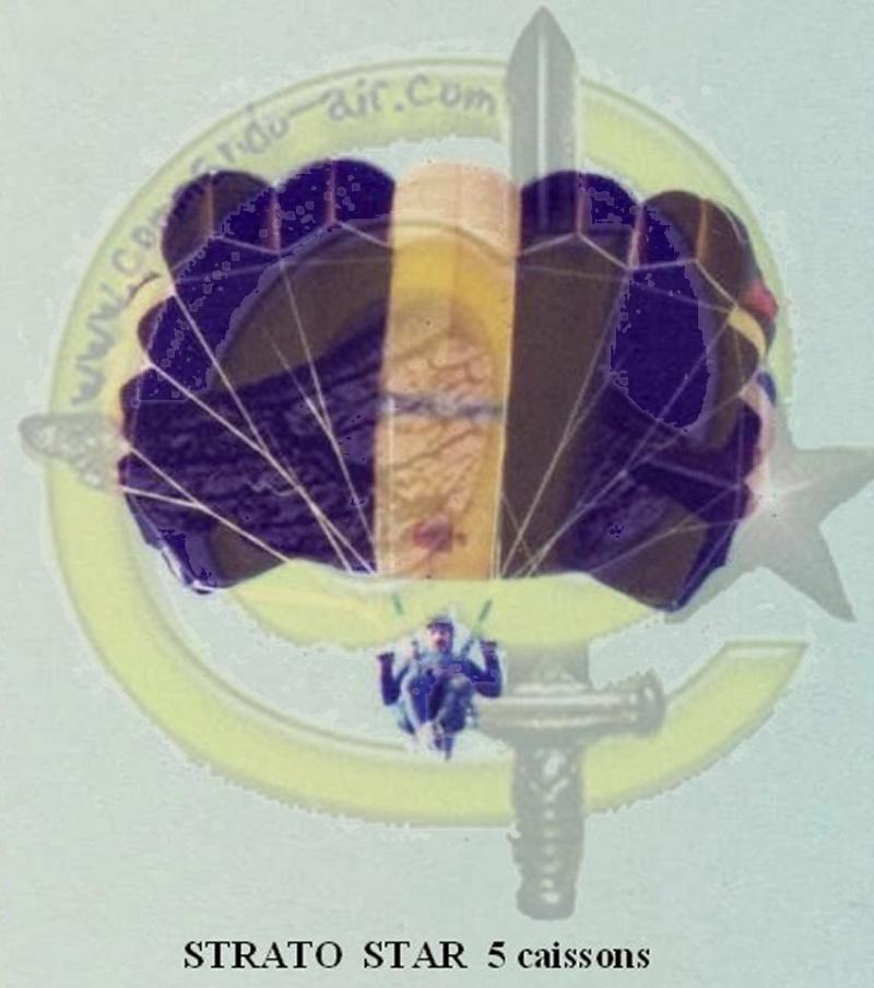 Drapeau des Commandos Parachutistes de l'Air Avatar13