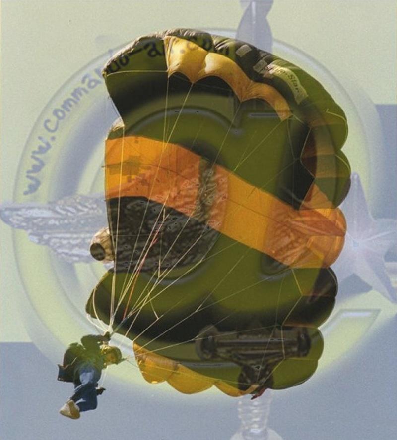 Drapeau des Commandos Parachutistes de l'Air Avatar14