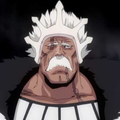Bleach - Personnages Barrag10
