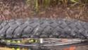 Une roue de 20 pouces sur la neige [Marathon Winter] 2009-010