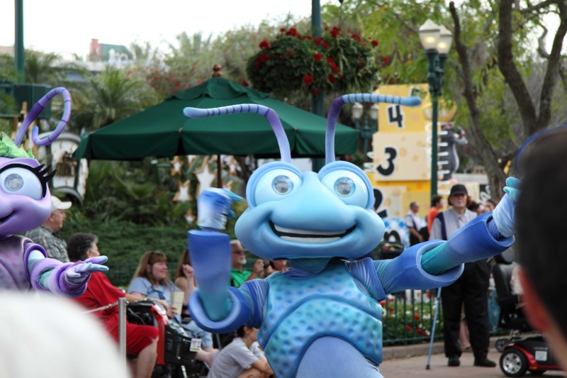 TR Walt-Disney World,Universal Studios, Et Daytona 500 Février 2013   - Page 5 Dpp25042