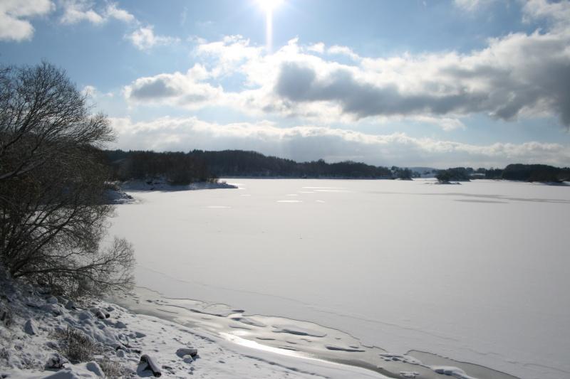 Lacs de l'Artense (La Crégut, Lastioulles...) 2009_019