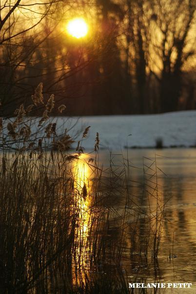 Coucher de soleil d hiver Imgp3814