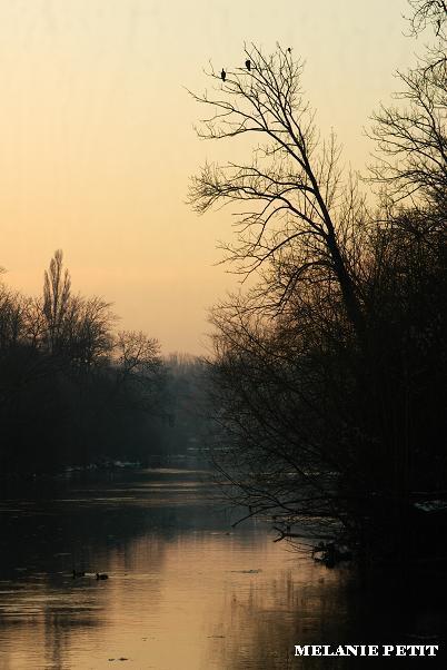 Coucher de soleil d hiver Imgp3910