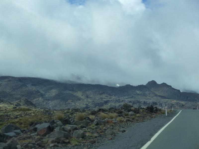 Photos de NZ P1020510